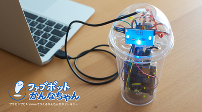 Small fabbot photo 201506